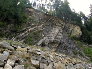 Central Alps – Flysch and Molasse