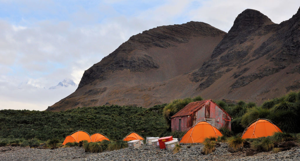Our camp ground on the gravelly coast (the hut is a relic from the whaling days of South Georgia).