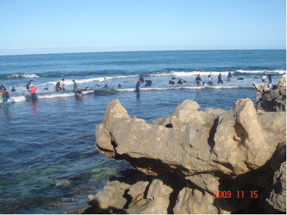 The beach of Perth, Western Australia (some people were catching abalone).