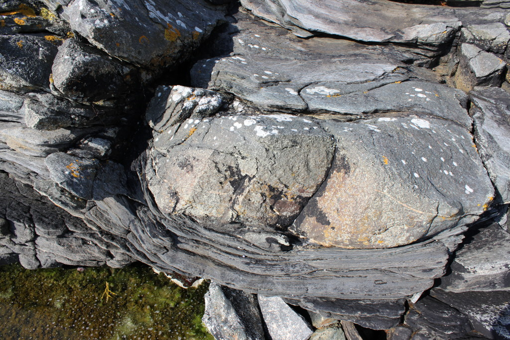 Eclogite boudin within gneiss.