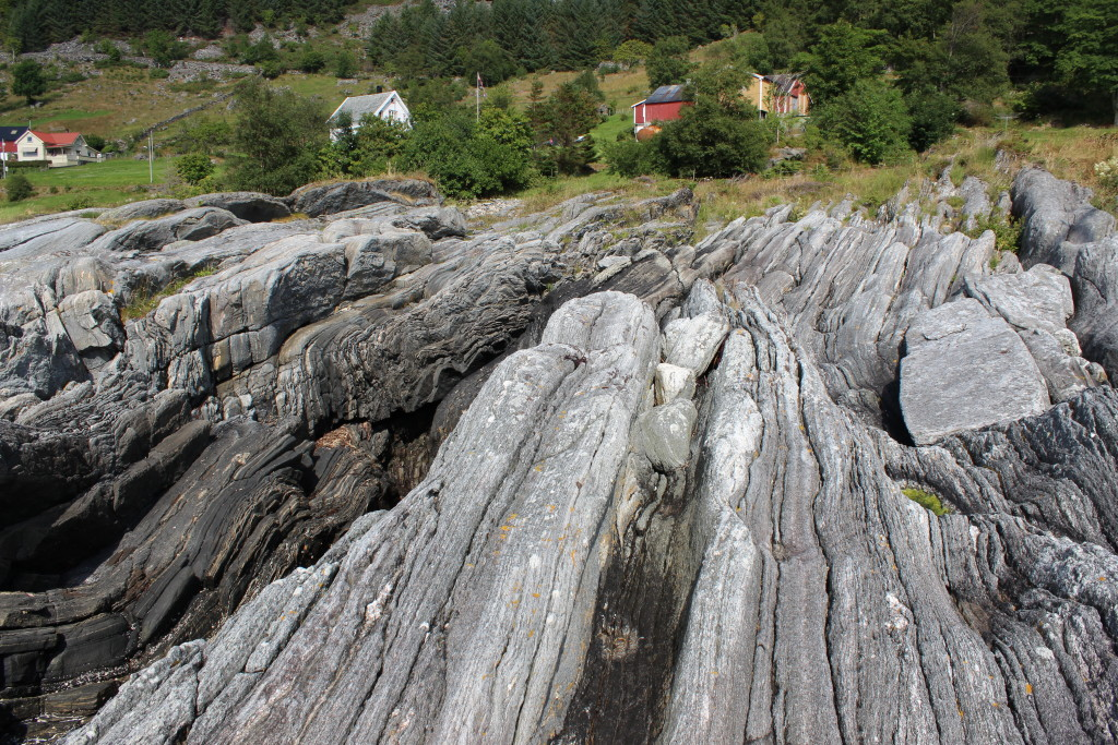 Sub-vertical foliation of gneisses near the Grytting eclogite locality.