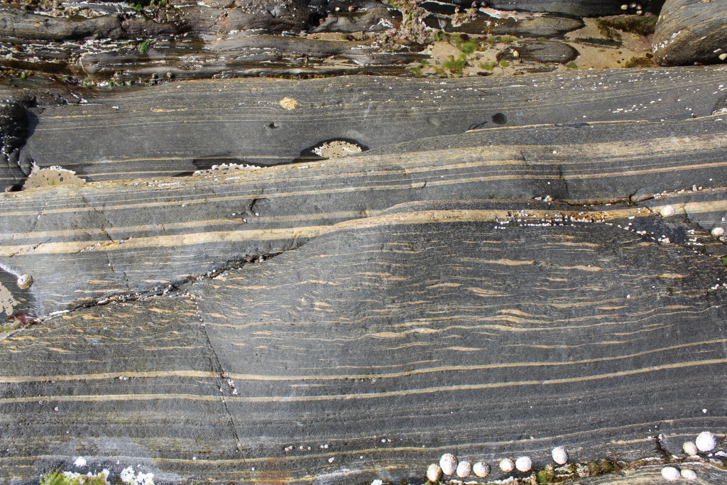 Extensional fabric in gneiss, sense of shear is top-to-the-left