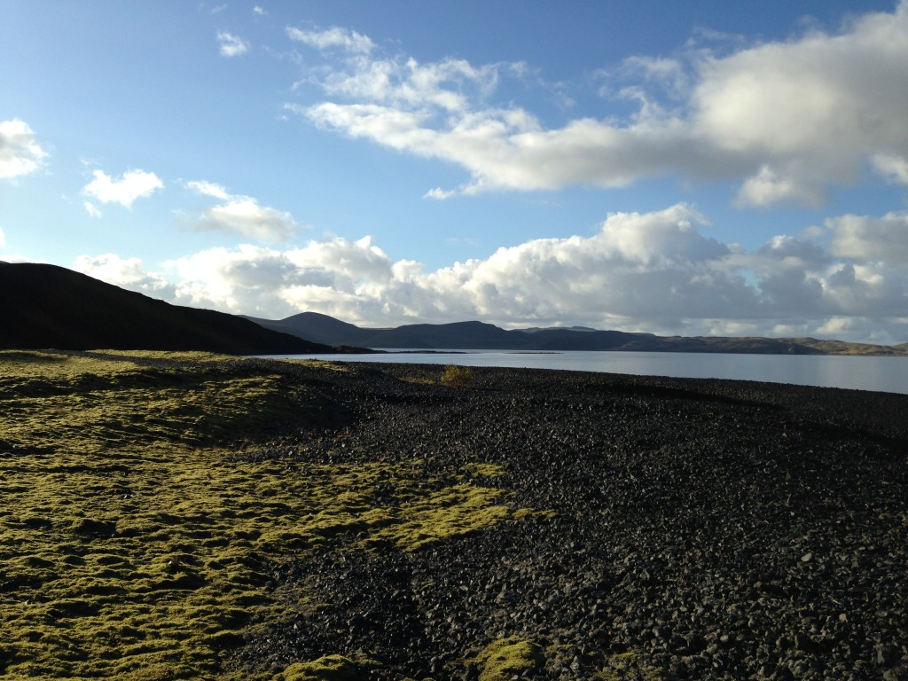 Kleifarvatn lake on the Reykjanes Peninsula. Cryptogamic communities thriving on loose ground on the lake margin.