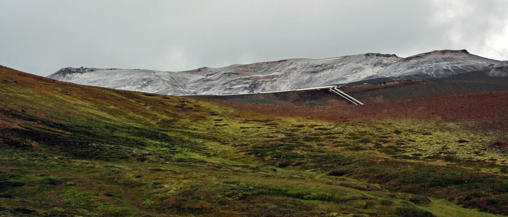 Extensive mixed cryptogamic communities on slump slopes near to the summit of Krafla (note pipeline from a geothermal power plant below us).
