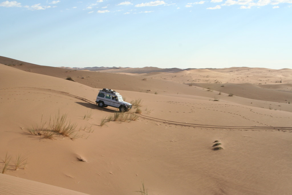 Photo 8: Navigating the gentler terrain of some of the smaller dunes.