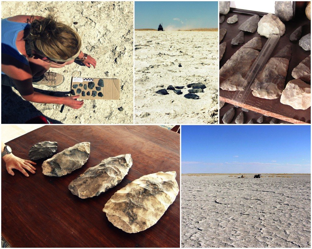 Above: Mapping surface distributions of Palaeolithic tools, the remnants of past inhabitants of the Makgadikgadi basin.  Lithic tools are predominantly MSA within the Makgadikgadi complex itself but components of these assemblages are extraordinary including what are likely to be some of the largest hand axes in the world (bottom left – my hand for scale).