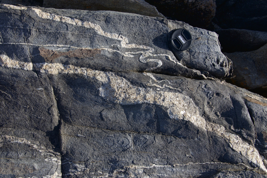 Incongruent folding in granitic dykes