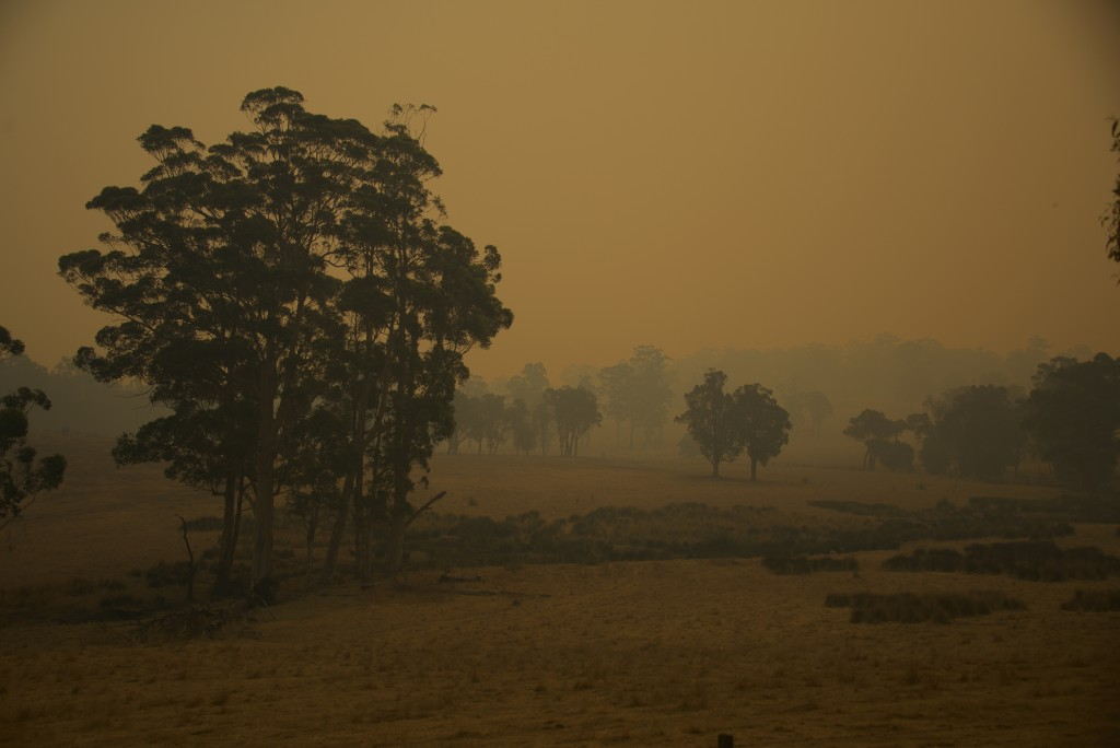 Thick smoky haze from the Northcliffe bushfires