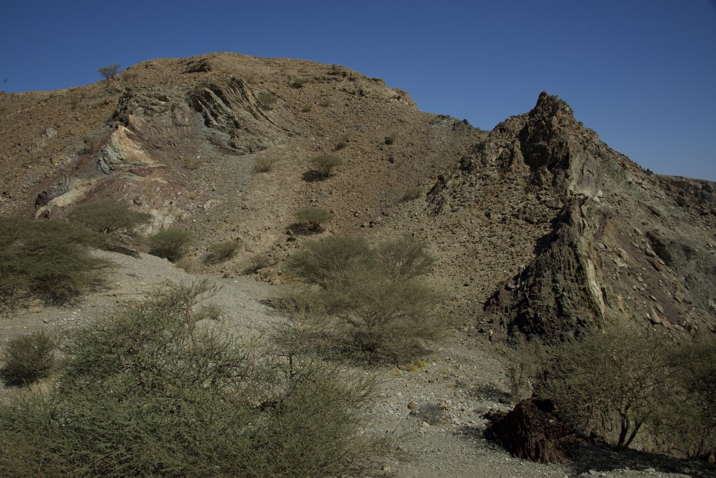 ...much of which were strongly deformed during ophiolite obduction.