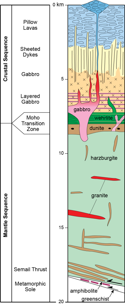 Schematic model of the Semail Ophiolite showing the major lithological units (after Searle et al., 2014).