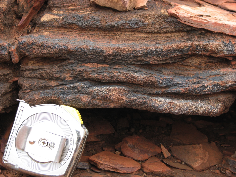 Close up of the base of the Wittenoom layer – the spherules are just above the tape measure.