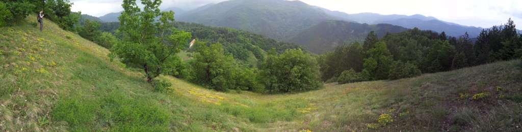 Panoramic view of the Majdanska River valley, which is heavily forested except for some patches of sulfur and arsenic-bearing deposits.