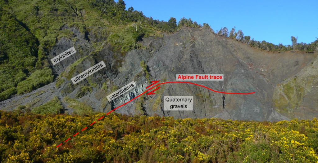 The archetypal Alpine Fault exposure at Gaunt Creek. The Alpine Fault principal slip plane lies at the base of the distinctive mint-green cataclasites, and exhumes a kilometre-wide hanging-wall sequence of mylonites formed at depth.