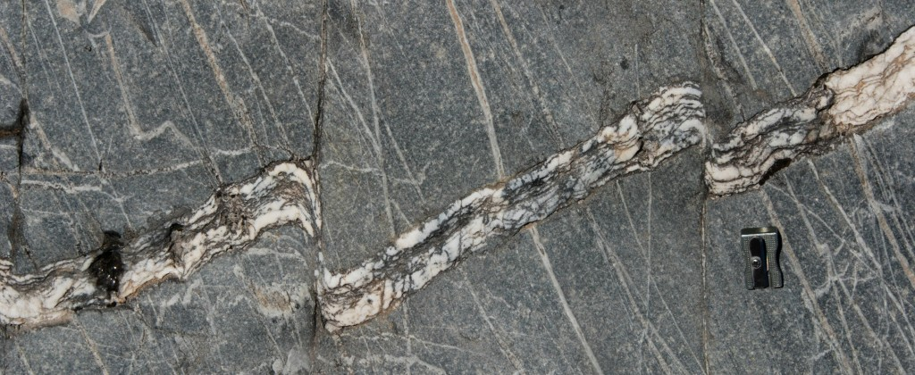 Brittle-ductile shears in quartz veins at Crawford Knob.