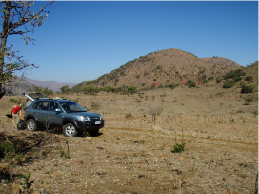 Fig. 4. Game reserves offer special problems. Here we are getting ready to hike out from our vehicle in the morning with 3 rhinos (red arrows) and herd of wildebeest watching us get ready.