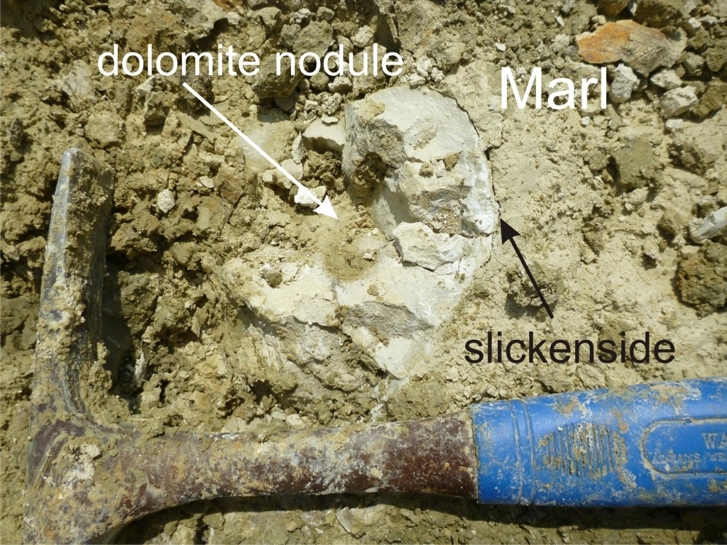 Fig. 4: Authigenic dolomite nodule and slickensides.