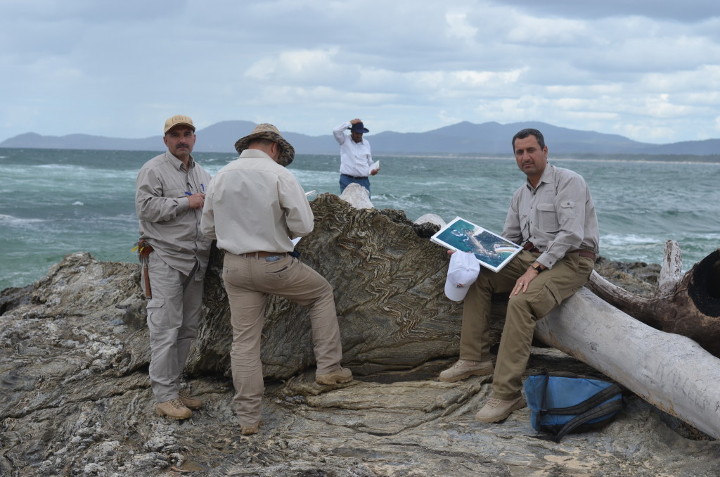 Figure 1: Geologists from the Iraqi Geological Survey, in a structural mapping course at the multi-deformed rocks of Nambucca Heads, New South Wales, Australia.