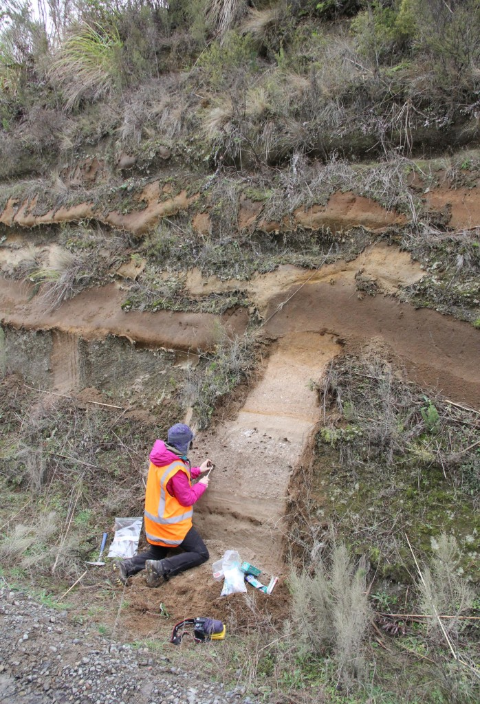 Collecting pumice at an outcrop of the Oruanui supereruption.