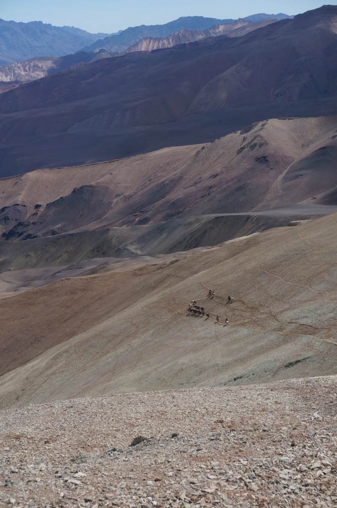 Part of the group going down the Cordón del Espinacito. As you see, there is not an excess of vegetation in the area.