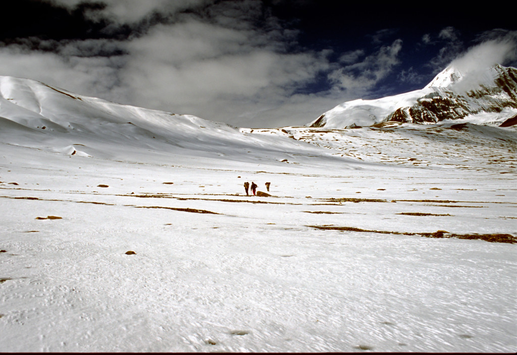 Photo 1. Nepali crew members walking towards French Pass in the Dhaulagiri Himal. (Photo credit – K.Larson)