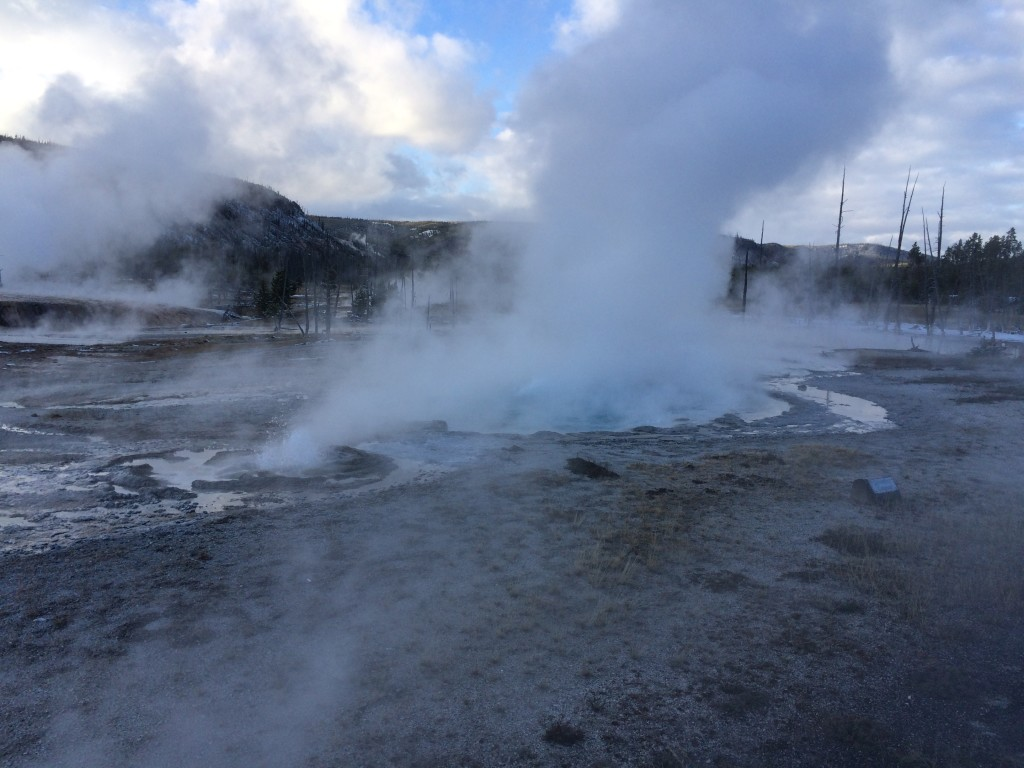 Spouter Geyser mid-eruption.