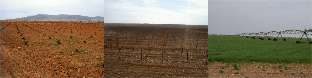 Large-scale agriculture (mainly grapes) requiring large-scale irrigation in the Castilla – La Mancha region in Spain.