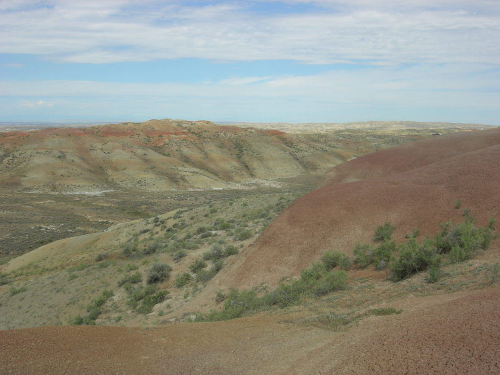 Vivid red PETM paleosols (ancient soils) paint the tops of these eroding hills.