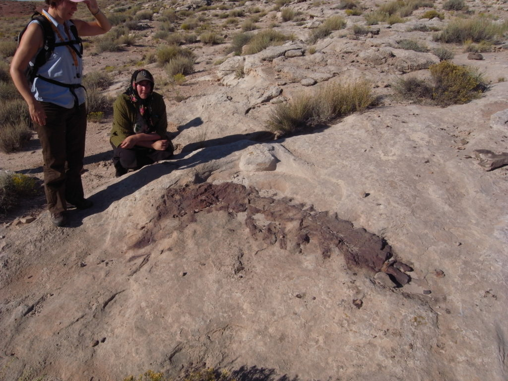 Dino fossil in the Black Dragon Canyon. Students, Mimmi Nilsson and Victoria Beckman