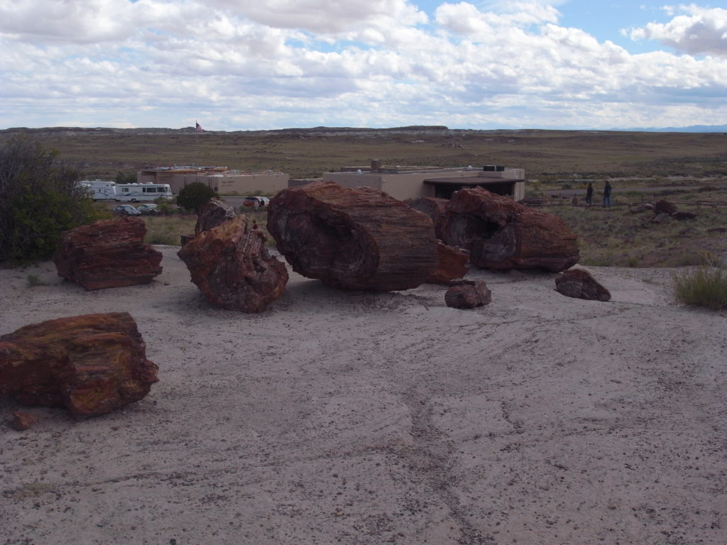 Some petrified wood-logs at the Petrified forest.