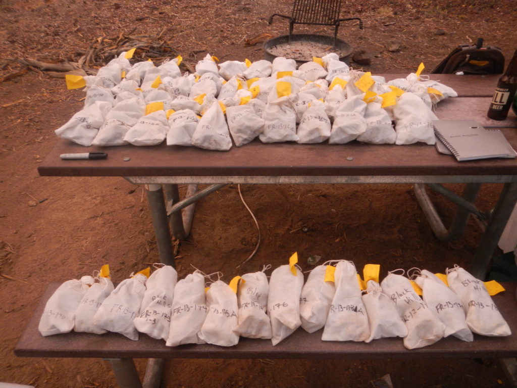 Two weeks-worth of tuff and lava sample from throughout the Fort Rock basin. Photo by Matthew Nikitczuk.