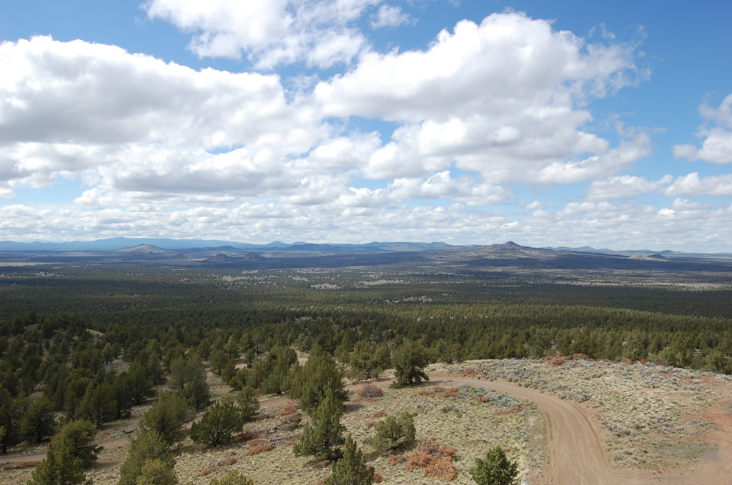 A view of the Fort Rock basin from atop Green Mountain. Multiple volcanic peaks can be seen in the distance across the landscape. Photo by Matthew Nikitczuk.