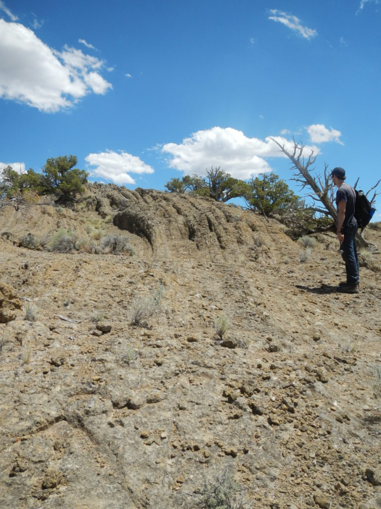 Frank Popoli, another Master's student of Dr. Schmidt's, examines an exposure or curved layers of tuff at the top of a tuff ring in the Black Hills. Photo by Matthew Nikitczuk.