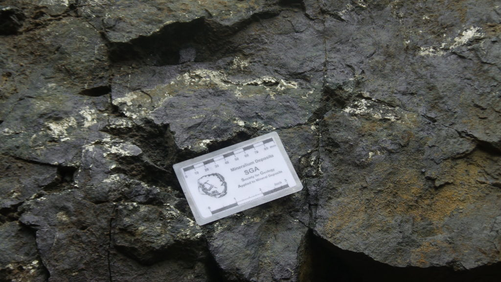 This rock contains mostly magnetite with pyrite.