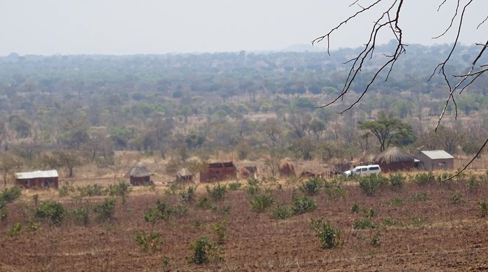 A small group of houses in Zambia's Chipata district